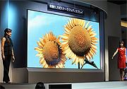 155 Zoll OLED-Display