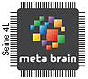 Meta Brain